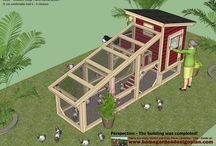 Kids projects / Chicken coop bluprint