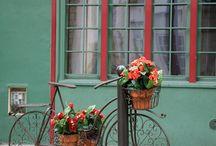 Bycicles forniture / Biciclette arredi interni