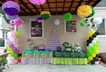 Birthday Party 6yo gurl