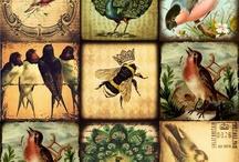 Винтажные птички