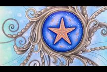 Lost ocean starfish