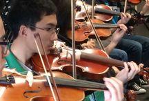 Arcadia Orchestras