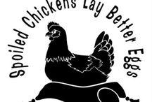 Backyard Chickens / Raising Backyard Chickens / by Dorann Weber