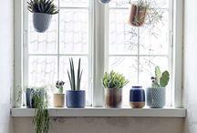 peitoris de janelas