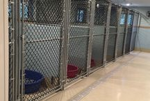kennel setups