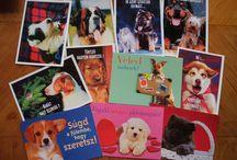 Képes levelezőlapok (postcards) - Kutyák, saját gyűjteményem.