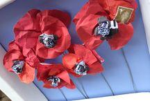 Wild Flowers / Daisies, Bluebells & Poppies