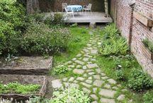 Narrow garden