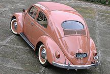 Beetle Bugs / All things Volkswagen bugs/beetles and buses! / by Samantha Hollingshead