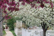 puutarha ja luonto