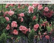 How Does Your Garden Grow? / Gardening / by Geneva Library