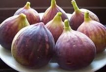 İncir Fidanı Çeşitlerimiz / Tüplü satışı yapılan #incir #fidanı çeşitlerimizi  incelemek için http://www.e-fidancim.com/Incir-Fidani-Cesitleri-,LA_209-2.html  linkine tıklayınız