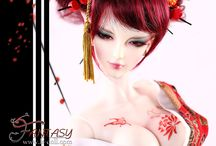 - Fox - MeiJi Limited(80sets) / about
