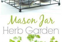 Garden & herbal