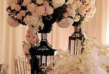 beautiful wedding plans / by Teri Haugen