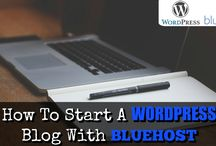 STARTING A BLOG / Selected articles for new Bloggers.