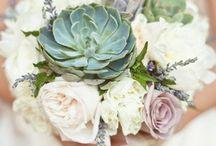 Blumen - Hochzeit