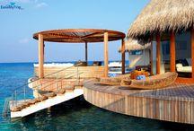 Honeymoon in Maldives  / Enjoy your honeymoon in Maldives