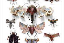 Bugs! / by Daisy Mae