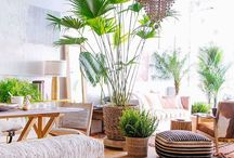 Home Decor - Living Room