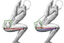 Squats with Proper form