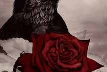 The Rose and the Raven (Storyboard) / Sleeping Beauty retelling I wrote (novella)