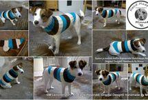 """Neulotut Koiran villapaidat, knitted dog's sweaters since 2005-> / Koirien Sisukas villapaidat. Huippumalleina toimivat omat koirani: Jackrusselinterrierit Sisu & Martta ja jo edesmennyt ihana coton mummeli -Nuppu  Super models are, my own Jack Russell terriers: Sisu & Martta and coton """"granny"""" Nuppu (R.I.P) Aren't they best models ever?"""