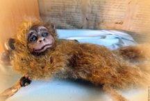 Дитёныш обезьяны