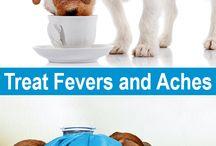 Tottori Allergy & Asthma