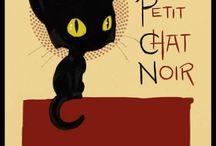 Desenhos de gatinhos / Desenhos