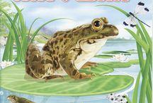 Т spring pond / Идеи для класса / by Алиса