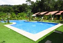 Ecolodge and Rainforest Tour company For Sale / http://www.dominicalrealty.com/property/?id=4022