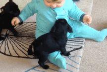 Bimbi e cuccioli