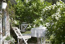 Det lille hjørne - haven / De små pladser i haven