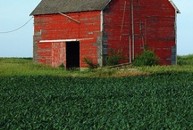 Barns and Farms / by Sandy Halverson