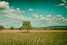 Natur / Fotos über Landschaften, Natur allgemein