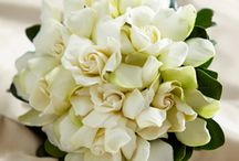 Wedding / A special bouquet on your special day.