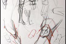 人体(下肢):描き方 / 参考資料
