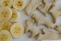 Cocina para mascotas