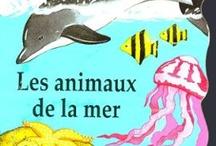 Animaux de la mer (ressources au CPRPS)