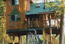 Tree House's / by Gregory Wright