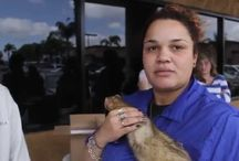 What do Californians think of the ferret ban? / We interviewed random people outside a local pet store to ask their opinion on not being able to legally own ferrets.  Please support us at http://legalizeferrets.org/index.php/support