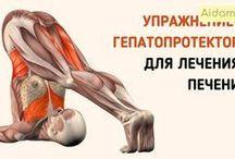 упражнения для лечения печени