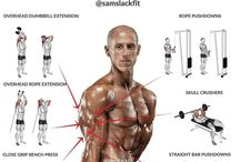 Fitness Triceps