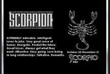 Scorpio / by Valoree Pacheco