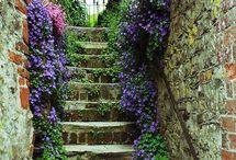 Giardini incantati