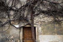Uși către visare...