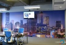 Wall Murals / Commercial indoor wall wraps and artwork