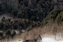 moko <3 winter