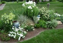 front yard makeover